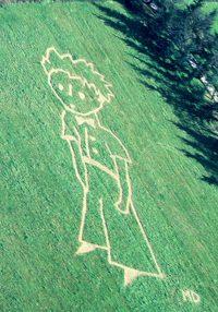 """Luftaufnahme des """"Kleinen Prinzen"""" am 15.5.1995 in Toulouse"""