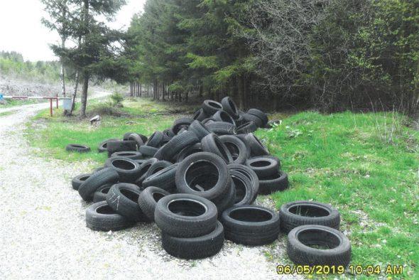 Illegale Müllentsorgung in Eiterbach (Bild: Polizeizone Eifel)