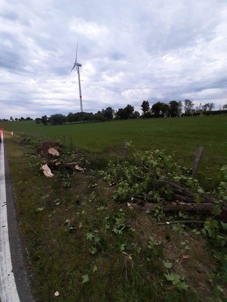 Spuren des Unfalls zwischen Büllingen und Losheimergraben (Bild: Chantal Scheuren/BRF)