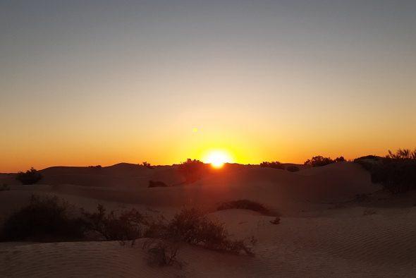 Ursula Dahmen aus Bütgenbach organisiert Wüstenreisen nach Tunesien (Bild: privat)