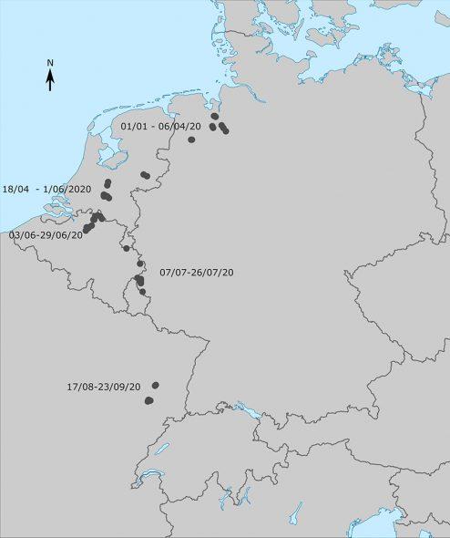Rekonstruktion des weiten Wanderweges von (Illustration: SPW Wallonie)