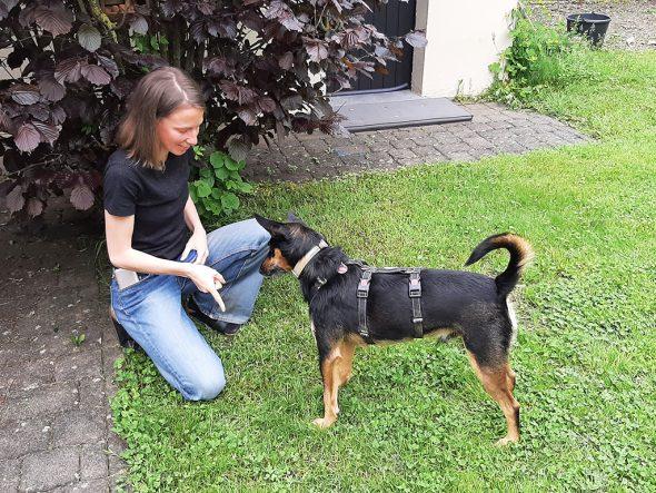 Jana Elza Wuyts mit Hund Boef (Bild: Manuel Zimmermann/BRF)